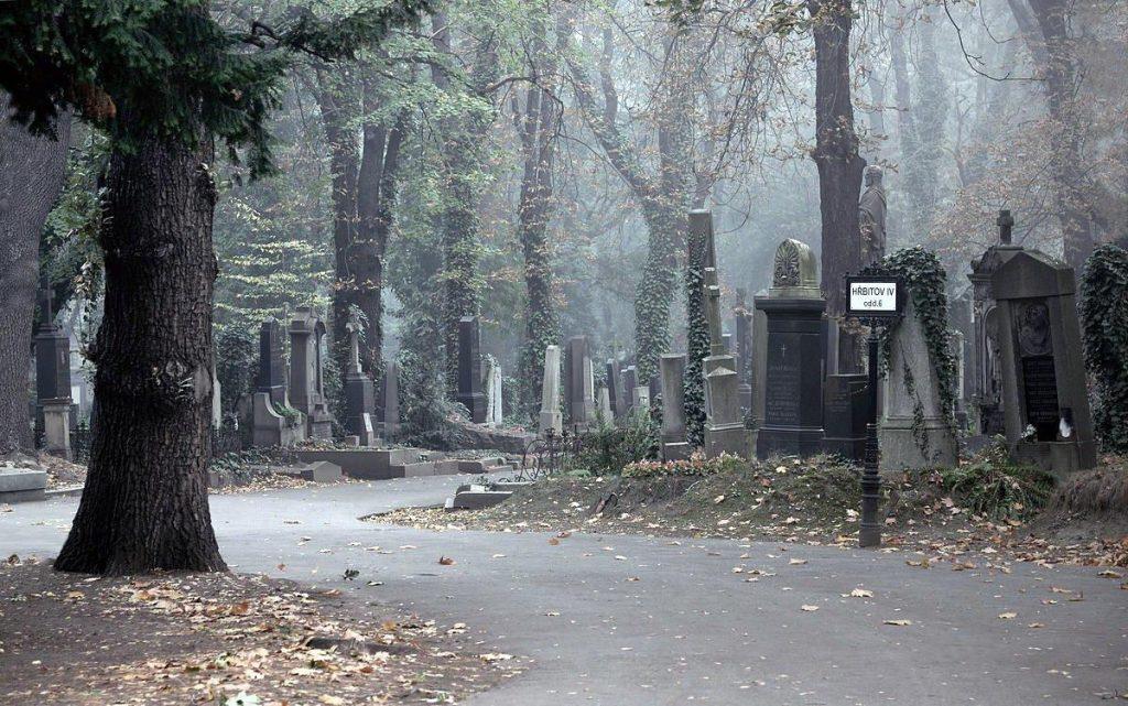 Ольшанское-кладбище-8